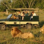 safarivehicle