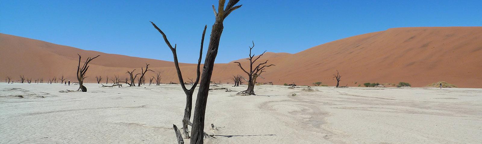 namibia-dead-vlei