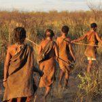 adobe stock kalahari bushmen