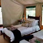 Kanga Camp Tent